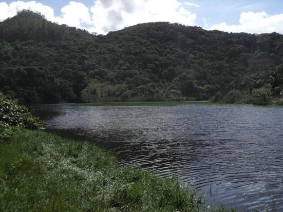 Figura 67. Lagoa localizada no canto norte da Prainha Branca, que recebe grande parte dos efluentes domésticos sem tratamento.
