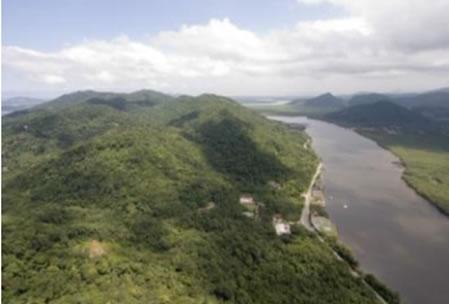 Figura 09. Vegetação de Floresta Ombrófila Densa recobrindo a maior parte da Serra do Guararu.