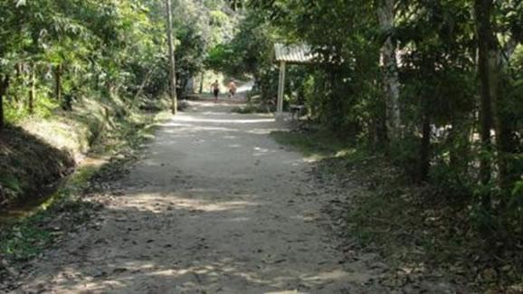 Figura 14. Prainha Branca, local característico de Floresta Ombrófila de Terras Baixas. Notar substrato arenoso.
