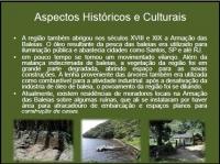 Aspectos Históricos e Culturais