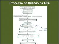 Processo de Criação da APA